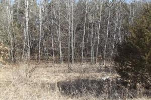 1.3 Acres Hwy 14 - Richland County WI