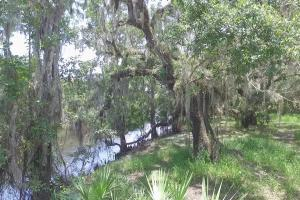 Outdoor Paradise Retreat on Peace River in DeSoto, FL (21 of 24)