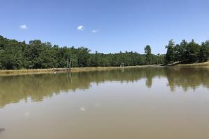 Stocked Pond on Edge of Food Plot on +/-80 Acre Kemper County, MS Hunting & Recreational Property With Custom Cabin and Pond (3 of 25)