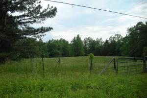 17+/- AC Potential Farm with Pasture in Haralson, GA (2 of 28)