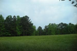 17+/- AC Potential Farm with Pasture in Haralson, GA (5 of 28)