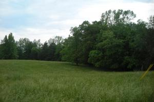 17+/- AC Potential Farm with Pasture in Haralson, GA (14 of 28)