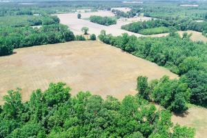 Whitakers Farm Land and Timber - Edgecombe County NC