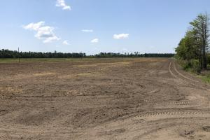 Grays Open Tillable Farming Fields - Jasper County SC