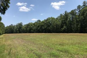 Ridgeland Recreational Farm Estate - Jasper County SC