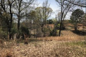 Tate County Farm and Homesite  in Tate, MS (5 of 10)