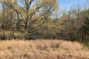 Tate County Farm and Homesite  in Tate, MS (10 of 10)