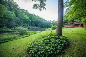 Well Maintained Landscaping - Secluded Mountain Cabin on 103 Acres with Pond and Creek (11 of 49)
