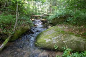 Large boulders along creek - Secluded Mountain Cabin on 103 Acres with Pond and Creek (47 of 49)