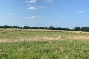 22.7 acres in Henderson County.  (5 of 5)