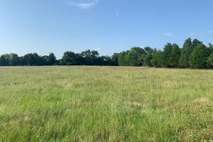 23.8 acres in Henderson County.  (2 of 5)