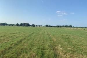 11.5 ac Improved Hay Pasture near Eustace - Henderson County TX
