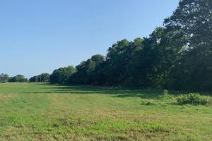 Excellent investment tract. Well manicured hay meadow in Henderson County.  (4 of 5)