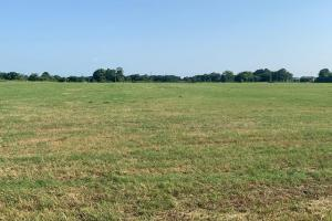 Lush hay meadow in Henderson County on 11.2 acres.  (3 of 5)