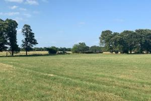 11.2 acres of well maintained hay pasture in Eustace.  (2 of 5)