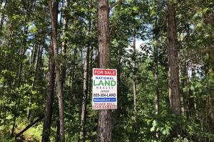 41 Acres Ball Rd. Hunting & Timber Tract in Winston, MS (6 of 21)