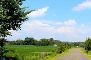 Beautiful Farmland with No Conservation Easements in Fauquier, VA (6 of 8)