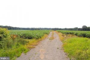 Beautiful Farmland with No Conservation Easements in Fauquier, VA (7 of 8)