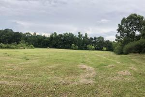 Prime Weekend Get-Away & Hunting Tract in Scott, MS (21 of 32)