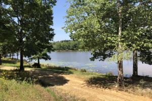 Lake Property With Cabin Sites in Montgomery, MS (13 of 15)