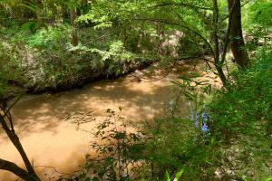 Bogue Chitto Creek and Recreational Tract - Choctaw County AL