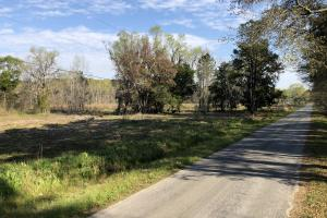 Dale 10 Ac Open Land Rural Residential in Beaufort, SC (9 of 19)