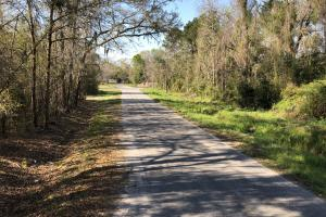 Dale 10 Ac Open Land Rural Residential in Beaufort, SC (13 of 19)