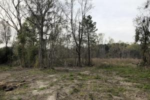 Dale 10 Ac Open Land Rural Residential in Beaufort, SC (18 of 19)