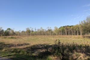 Dale 10 Ac Open Land Rural Residential in Beaufort, SC (7 of 19)