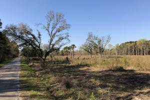 Dale 10 Ac Open Land Rural Residential - Beaufort County SC
