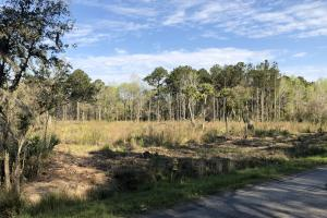 Dale 10 Ac Open Land Rural Residential in Beaufort, SC (6 of 19)