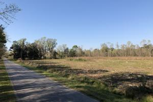 Dale 10 Ac Open Land Rural Residential in Beaufort, SC (8 of 19)