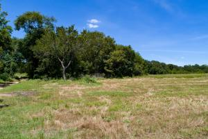 Beautiful land to call home on 20 acres in Eustace. (14 of 14)