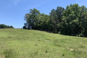 Pickens Mountain View Homesite in Pickens, SC (2 of 17)