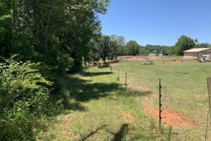 Pickens Mountain View Homesite in Pickens, SC (14 of 17)