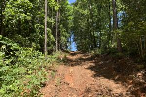 Pickens Mountain View Homesite in Pickens, SC (15 of 17)