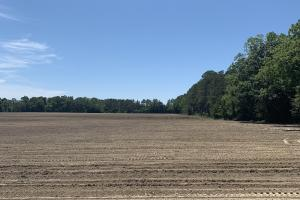 Creek Road Agricultural Land and Cattle Farm For Sale - Washington County FL