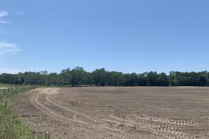 Creek Road Agricultural Land and Cattle Farm For Sale in Washington, FL (2 of 30)