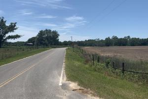 Creek Road Agricultural Land and Cattle Farm For Sale in Washington, FL (18 of 30)
