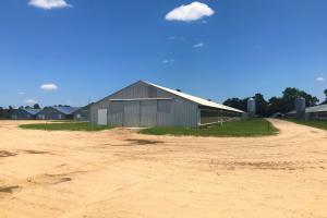 Orangeburg Six House Chicken Farm - Orangeburg County SC
