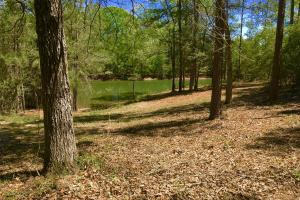 Okwakee Creek Camp and Pond Tract in Washington, AL (6 of 19)