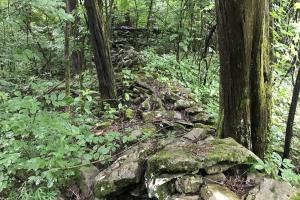Corryton Tennessee Land and Homesite in Union, TN (18 of 20)