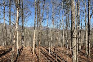 Table Rock Mountain View Homesite
