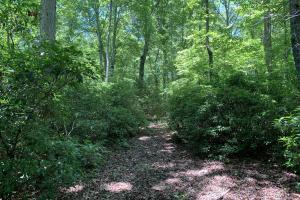 Table Rock Mountain View Homesite in Pickens, SC (10 of 17)