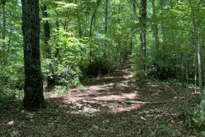 Table Rock Mountain View Homesite in Pickens, SC (7 of 17)