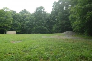296 Acres - Timber, Foodplots, Hunting and Recreation  in Adair, KY (19 of 65)