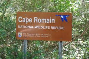 Property is adjacent to Cape Romain Wildlife Refuge (5 of 6)