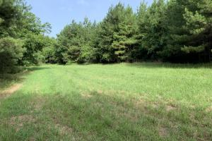 Uriah Riverfront Hunting & Timber Investment in Monroe, AL (48 of 61)