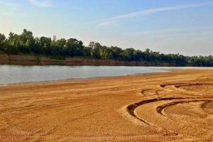Uriah Riverfront Hunting & Timber Investment in Monroe, AL (21 of 61)