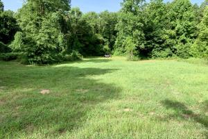 Uriah Riverfront Hunting & Timber Investment in Monroe, AL (50 of 61)